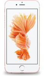 Ремонт Apple IPhone 6s в Москве
